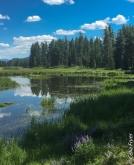 Grand Teton - Swan Lake-2