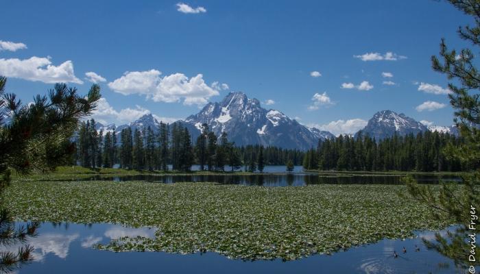 Grand Teton - Swan Lake-38
