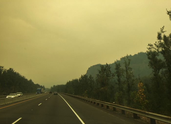 Eagle Creek Fire 1