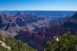 Grand Canyon National Park North Rim 2017-14