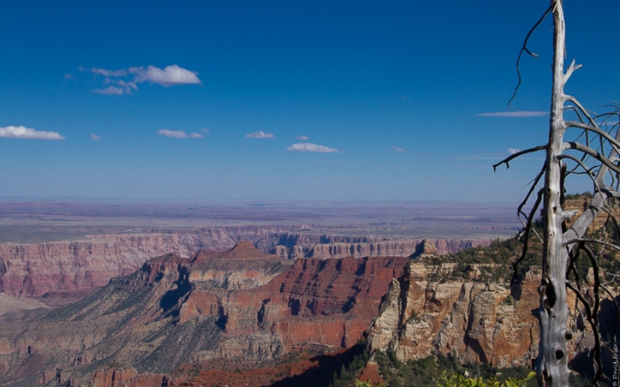 Grand Canyon National Park North Rim 2017-2-4