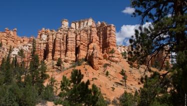 Mossy Creek Bryce Canyon UT 2017-33