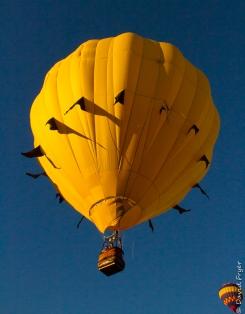 Albuquerque Balloon Fiesta 2017-117
