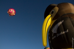 Albuquerque Balloon Fiesta 2017-178