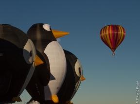Albuquerque Balloon Fiesta 2017-182