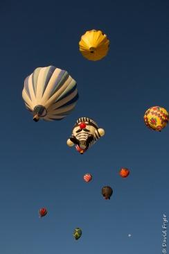 Albuquerque Balloon Fiesta 2017-223