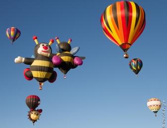 Albuquerque Balloon Fiesta 2017-258