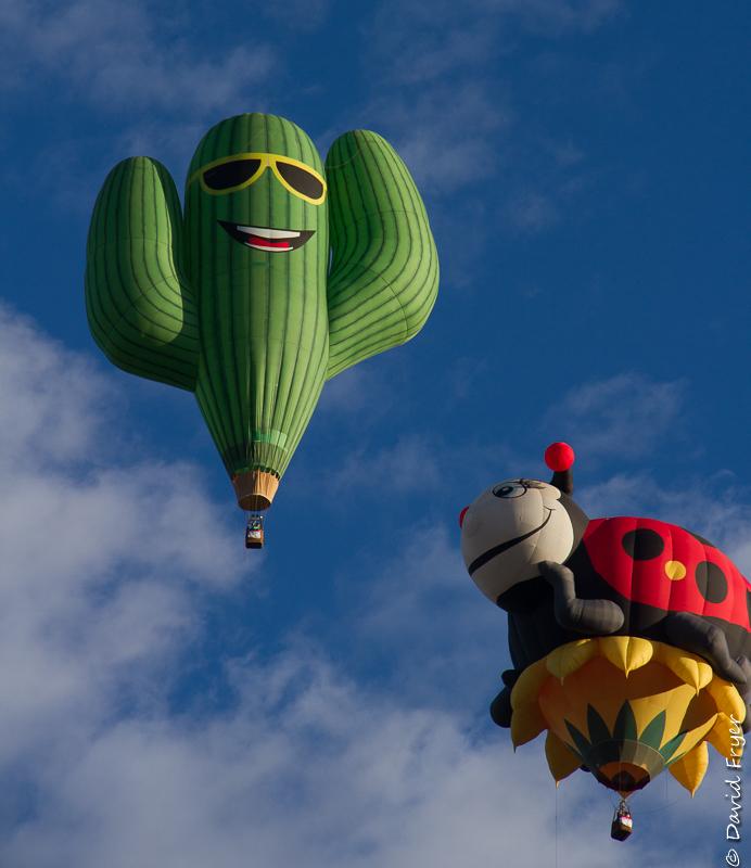Albuquerque Balloon Fiesta 2017-3-18