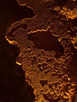 Carlsbad Caverns 2017-165