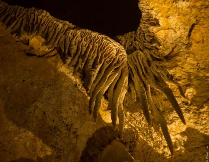 Carlsbad Caverns 2017-176