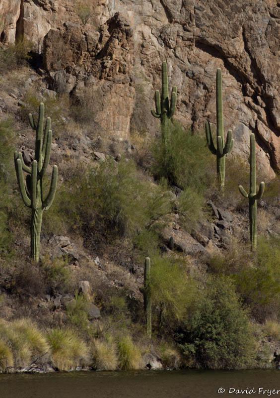 Canyon Lake AZ-75-2