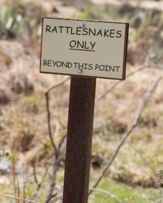 Boyce Thompson Arboretum AZ 2018-48