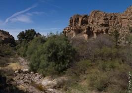 Boyce Thompson Arboretum AZ 2018-67