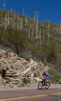 Mt Lemmon Tucson AZ 2018-13