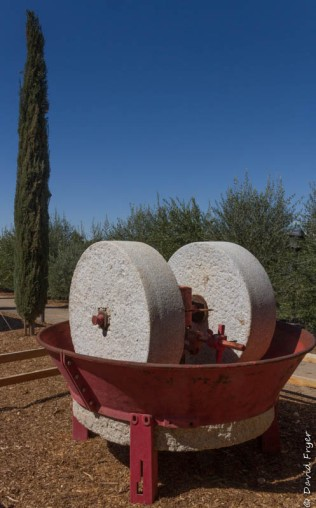 Queen Creek Olive Mill AZ-4