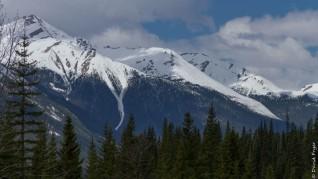 Canada National Parks Kootenay Banff Jasper-112