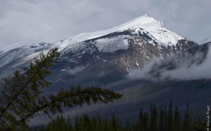 Canada National Parks Kootenay Banff Jasper-75
