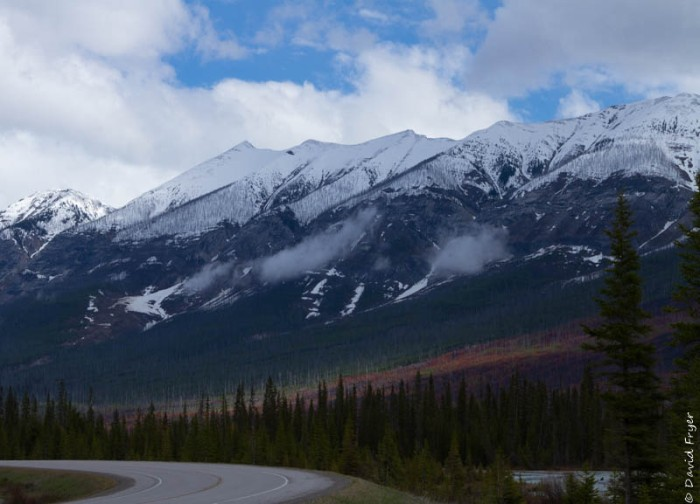 Canada National Parks Kootenay Banff Jasper-82
