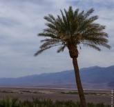 Death Valley CA 2018-78
