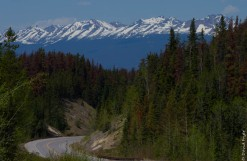 Jasper Icefields Parkway Athabasca and Sunwapta Falls-10