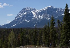 Jasper Icefields Parkway Athabasca and Sunwapta Falls-17