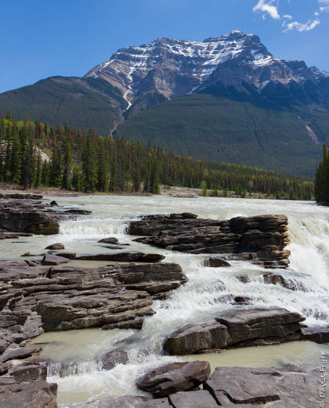 Jasper Icefields Parkway Athabasca and Sunwapta Falls-21