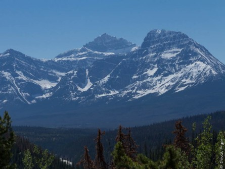 Jasper Icefields Parkway Athabasca and Sunwapta Falls-5