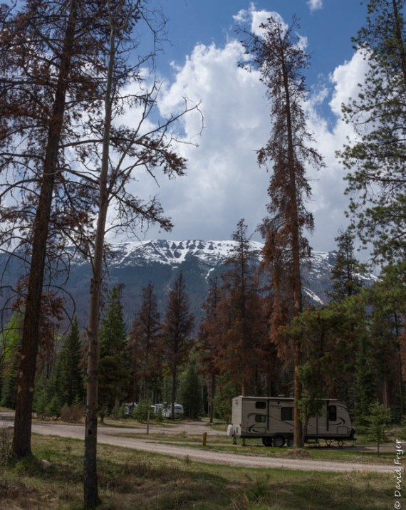Whistlers Campground Jasper AB 2018-4