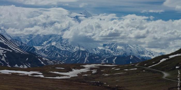 Denali National Park 2018-115-2