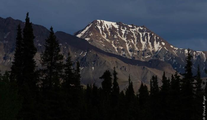 Denali National Park 2018-147-2