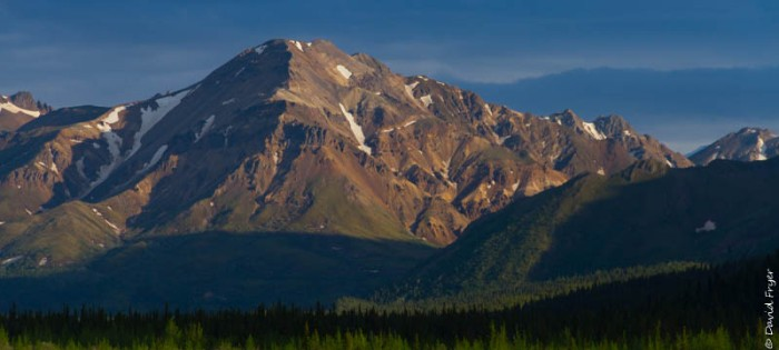 Denali National Park 2018-155-2