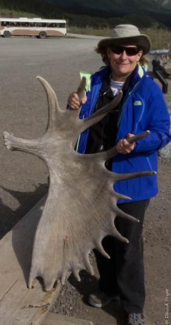 Denali National Park 2018-26-3
