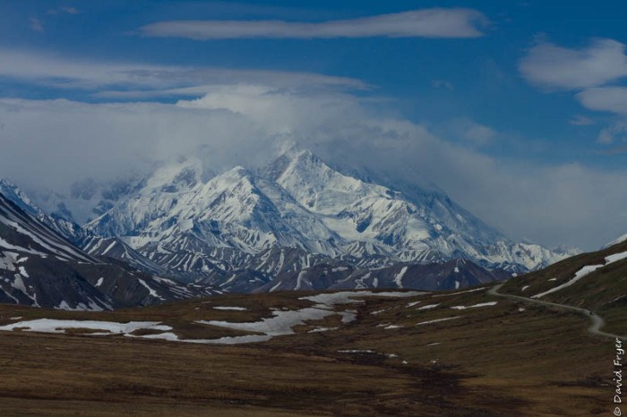 Denali National Park 2018-32-3