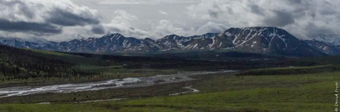 Denali National Park 2018-78