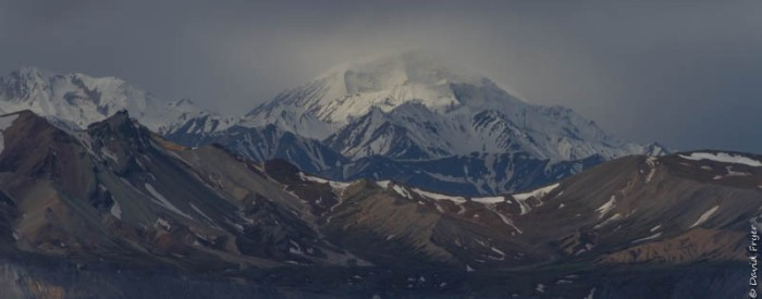 Denali National Park 2018-80-2