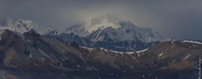 Denali National Park 2018-80-2