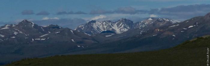 Denali National Park 2018-84