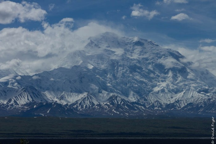 Denali National Park 2018-89-3