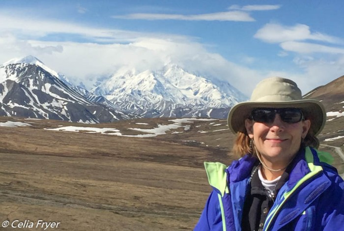 Denali National Park Celia 2018-3