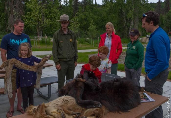 Denali State Park 2018-24-4