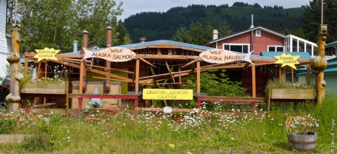 Homer Alaska 2018-158