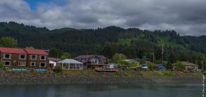 Homer Alaska 2018-182