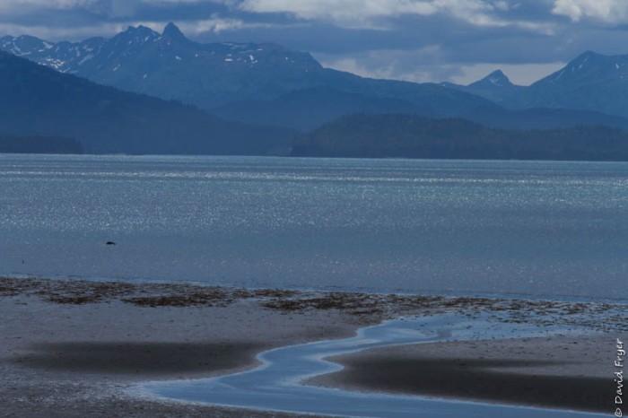 Homer Alaska 2018-233