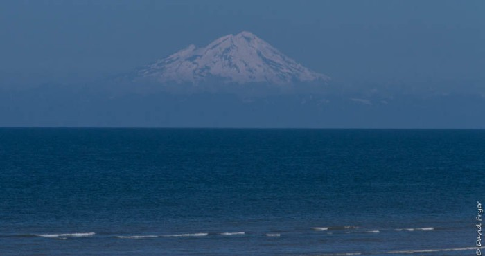 Homer Alaska 2018-312