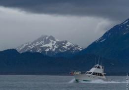 Homer Alaska 2018-33