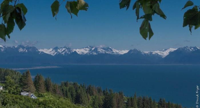 Homer Alaska 2018-350