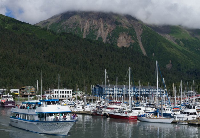 Seward Kenai Fjords Alaska 2018-236