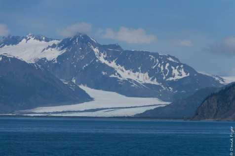 Seward Kenai Fjords Alaska 2018-309