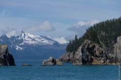 Seward Kenai Fjords Alaska 2018-342