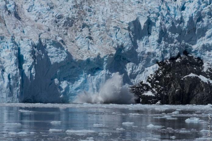Seward Kenai Fjords Alaska 2018-386